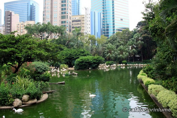 Kowloon Park Hong Kong