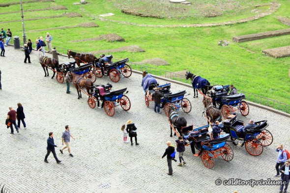 Tourist carriages in Rome