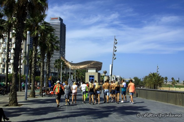 Barcelona Beach - walking jpg