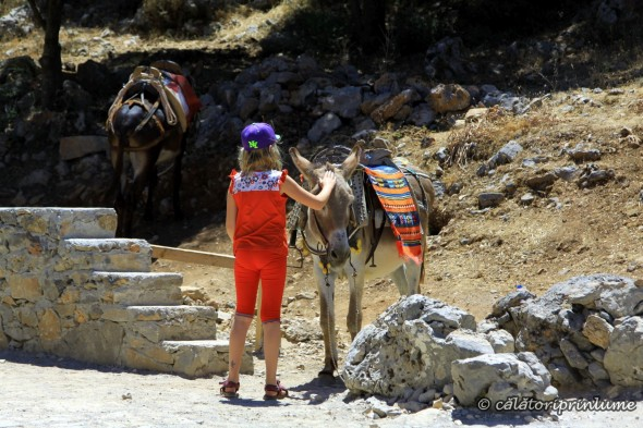 Funny way of transportation to Psychro Cave Crete