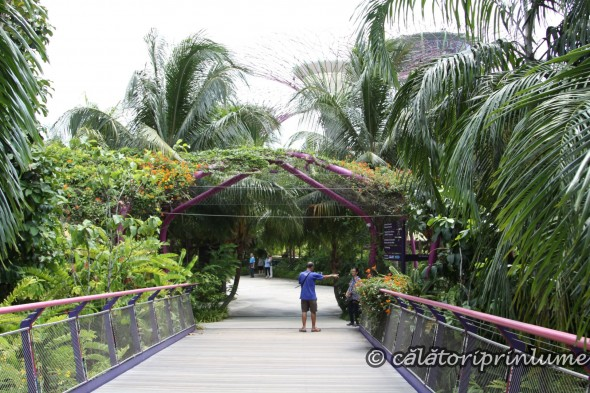 Entering the Gardens by the Bay Singapore