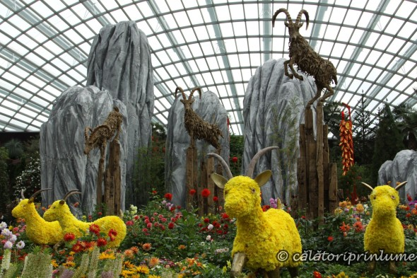 Flower Dome Gardens by the Bay Singapore - Chinese Nea Year Exhibition (8)