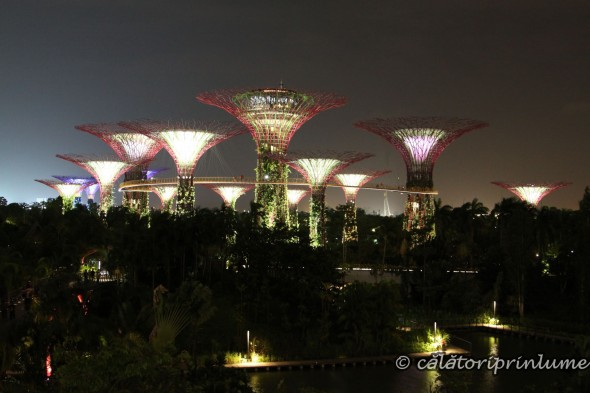 Super Tree light show Gardens by the Bay Singapore (1)