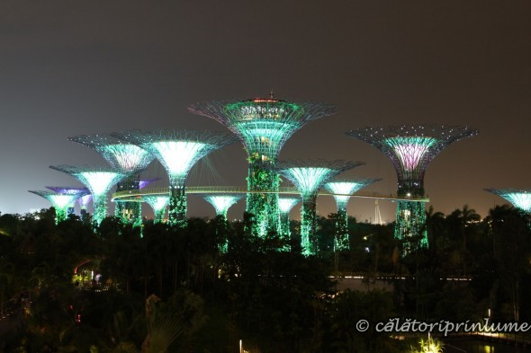 Super Tree light show Gardens by the Bay Singapore (2)