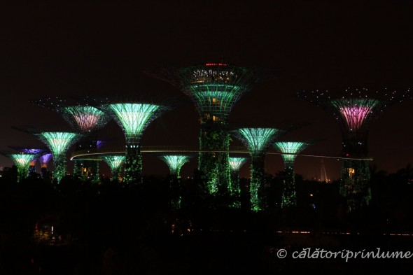 Super Tree light show Gardens by the Bay Singapore (3)