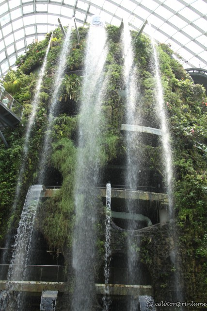Waterfall inside The Cloud Forest Conservatory Gardens by the Bay Singapore