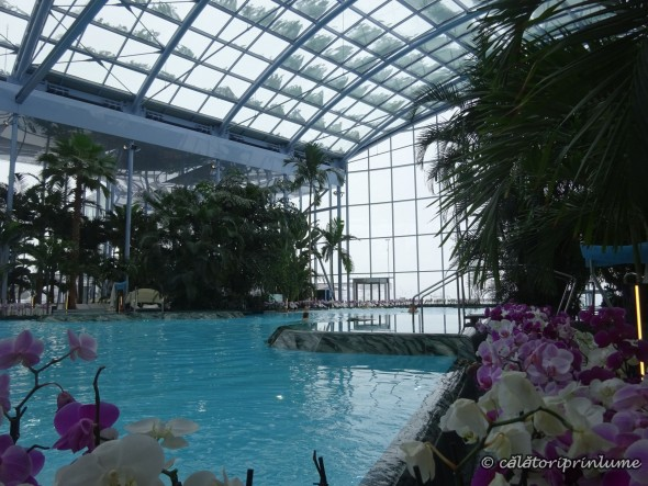 Piscina-Zona-The-Palm-Therme-Bucuresti