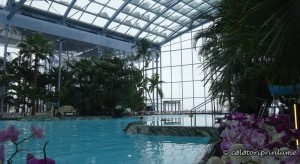 Piscina Zona The Palm Therme Bucuresti
