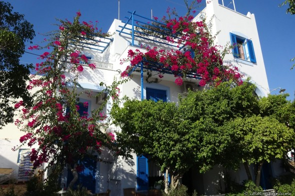 Invitatie in Naxos